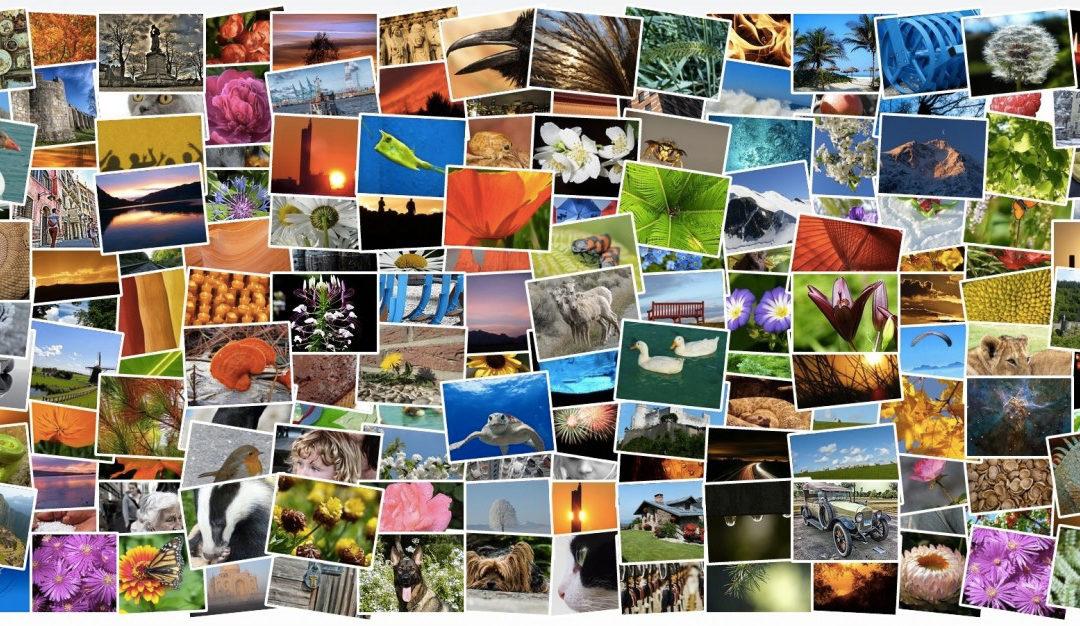 Album di Instagram: le opportunità per brand e aziende